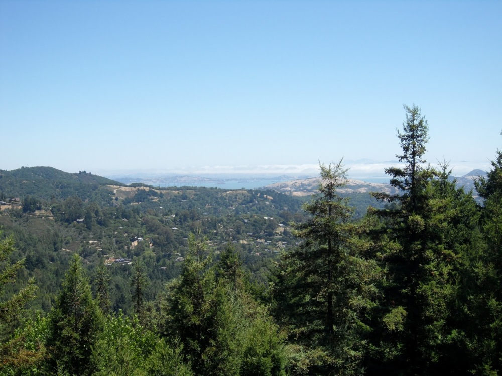 Trail: A PANORAMIC VIEW - Mount Tamalpais, Part 2